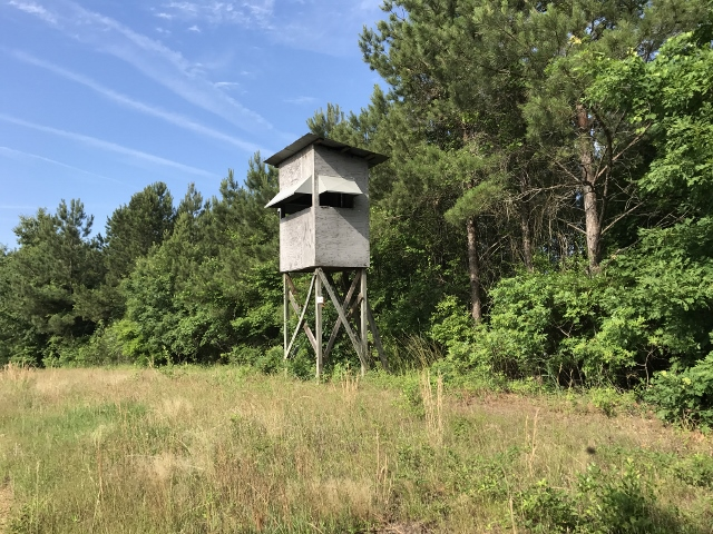 Tuscaloosa #1 (South Elrod) Tract