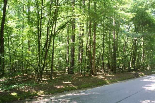 Athens Tract
